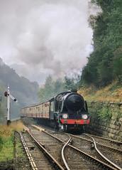 Greene King On The Gradient. (neilh156) Tags: steam steamloco steamengine steamrailway railway 841 greeneking goathland northyorkshiremoorsrailway northyorkmoorsrailway nymr uries15 s15classloco s15 southernrailway maunsell urie semaphoresignal