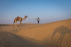 Rajasthan - Jaisalmer - Desert Safari with Camels-47