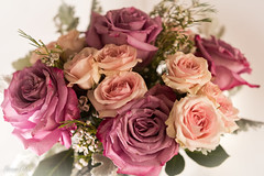 Flowers for Sunday (Irina1010) Tags: roses pastels flowers bouquet beautiuful canon