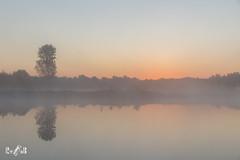 Sunrise on a Sunday morning (Renate van den Boom) Tags: 10oktober 2017 boom europa heerenven jaar landschap limburg maand maasduinen meer mist natuur nederland renatevandenboom weer zon zonsopkomst