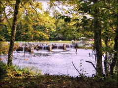 The Weir Fisherman (Chris C. Crowley- Always behind but trying to catc) Tags: theweirfisherman fishing flyfishing weir river holstonriver outdoors nature scenic landscape engineering water forest woods trees people riverbank bristoltennessee evacuatingfromhurricaneirma 9102017