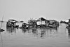 P4092475aa (wernkro) Tags: tonlesapsee kambodscha krokor