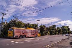 Karori - Karori Road (andrewsurgenor) Tags: transit transport publictransport nzbus gowellington electric trackless trolleybus trolleybuses wellington nz streetscenes bus buses omnibus yellow obus busse citytransport city urban newzealand