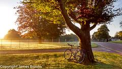 Heaton Park early autumn morning (james a brooks) Tags: sunrise tree heatonpark tourdefer genesis bike landscape cycling dusk