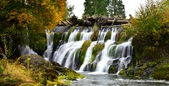 Tumwater Falls (Standing Hawk) Tags: tumwaterfalls tumwater olympiabeer washington pacificnorthwest southarmstudio flowingwter