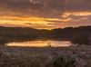 Loch Rusky Sunrise (Mr_Souter) Tags: autumn october 2017 sunrise places lochrusky europe 30 uk scotland