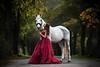 Like a princess (mona_hoehler) Tags: pet animal horse horses white stallion wild girl model beauty shooting nikon tamron red dress princess autumn forest magic dream