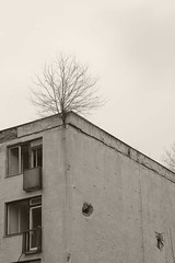 _MG_8406 (daniel.p.dezso) Tags: kiskunlacháza kiskunlacházi elhagyatott orosz szoviet laktanya abandoned russian soviet barrack urbex ruin gunshot