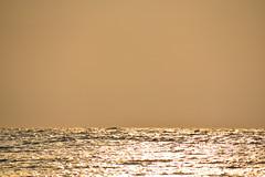 22 (25) (Khaled Nasr) Tags: sky rock sea tree river grass bay water shore forest landscape glencoe scotland outdoor waterfall zee see rain garden butterfly flower macro