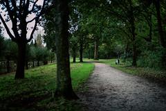 Dark park // Autumn Amsterdam (Merlijn Hoek) Tags: amsterdam merlijnhoek fotografie fotografiemerlijnhoek streetphotography street zuidoost amsterdamzuidoost