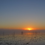 Misty Morning - Matin brumeux thumbnail