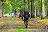 Chasseur d'images (Raymonde Contensous) Tags: rambouillet yvelines forêt bois nature espacerambouillet photographeanimalier