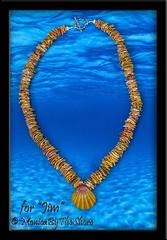 Jims Sunrise Shell Chip Lei MonicaByTheShore Hawaii 2 copy (MonicaByTheShore) Tags: sunrise shell shells jewelry monicabytheshore honolulu haleiwa seashell seashells hawaii us