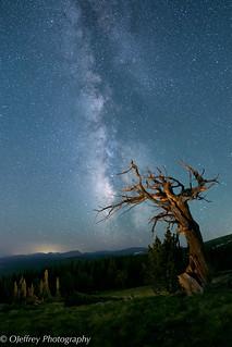 Colorado Night Skies