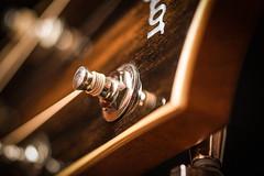 G-String (ein Blickwinkel) Tags: macromondays guitar taylor saite guitarre elixir spiral spirale