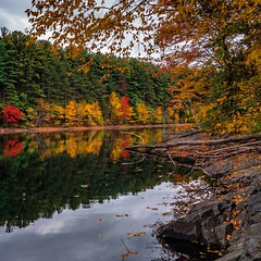 Fall foliage ((Jessica)) Tags: autumn massachusetts nature newengland fall reflections tree trees foliage winchester colorful boston