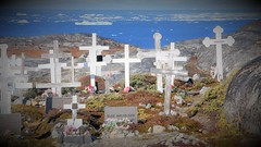All Saints (little_frank) Tags: cemetery ilulissat greenland graveyard 31october halloween resting rip rest cross mourn mourning coast dead death sea ocean diskobay icebergs past memory memories think thinking prayer