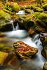 La courbière en automne (ppichard) Tags: ariège automne courbière rabat rivière