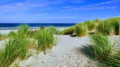 Ein Ort wo ich heute gern wäre (sabine1955) Tags: beach dünen nordsee borkum blau northsea