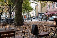Haus Müller (rbrands) Tags: köln herbst südstadt autumn cologne nrw deutschland de