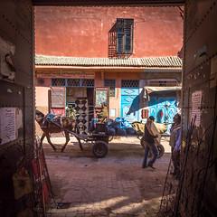 morroco-277.jpg (daviddalton) Tags: atlasmountains souk shopping medina morocco marrakech