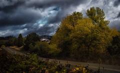 not what I'd expected... (Alvin Harp) Tags: eugene oregon i5 october 2017 sonyilce9 fe2470mmf28gm autumncolors abandonedhouse countryroad cloudsstormssunsetssunrises alvinharp