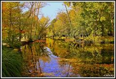 C'est l'automne au parc ! (Les photos de LN) Tags: parc majolan blanquefort gironde aquitaine automne couleurs feuillages végétation teintes nuances lumière métamorphoses