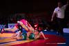 -web-9050 (Marcel Tschamke) Tags: ringen germanwrestling wrest wrestling bundeslig sport sportheilbronn heilbronn reddevils neckargartach urloffen