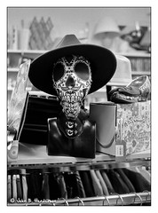 Day of the Dead (jbhthescots) Tags: 235mmsummicronpreasphkingofbokeh glasgow ilfordfp4200 ilfordid111115min leicam6classic plustek7600i sekonicl308s vuescan