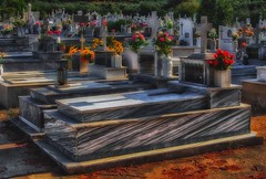 grave (try...error) Tags: greece cemetary marmor white black blue red rose olympus omd em5 12100 zuiko