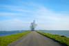 Art of Antony Gormley (davidvankeulen) Tags: europe europa flevoland provincieflevoland lelystad markermeer ijsselmeer crouchman hurkendeman exposure strekdamhoutribsluizen antonygormley steal staal davidvankeulen davidvankeulennl davidcvankeulen urbandc