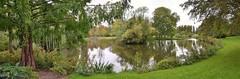 Vlaardingen, Oranjepark / 't Hof (Hugo Sluimer) Tags: vlaardingen zuidholland nederland holland oranjepark oranjeparkhethof vlaardingenoranjeparkhethof thof natuur nature natuurfotografie herfst