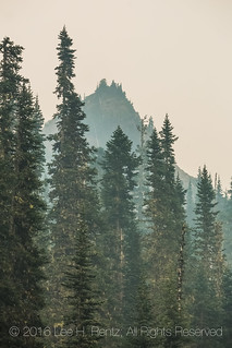 Thick Forest Fire Smoke in Olympic National Park