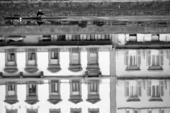 Rowing on a mirror - Florence - October 2017 (cava961) Tags: florence arno reflexes monochrome onocromo analogue analogico bianconero bw