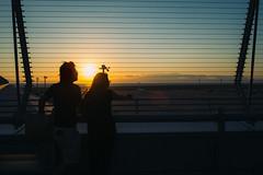Sunset at Chubu International Airport (yoshi_2012) Tags: streetphotography スナップ 富士フイルム fujifilm fujixseries back alley backstreet 路地裏 裏路地 travelphotography セントレア 中部国際空港 airport