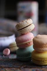 Macaroon (amuna_caty) Tags: macaroon macaroons dessert sweet cookies color food cake photo photography canon
