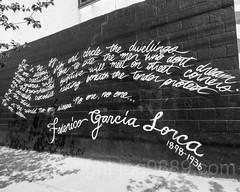 """Federico Garcia Lorca"" Mural, Bushwick, Brooklyn, New York City (jag9889) Tags: 2017 20170615 bw blackandwhite brooklyn bushwick graffiti kingscounty monochrome mural ny nyc newyork newyorkcity outdoor painting streetart tagging usa unitedstates unitedstatesofamerica wall jag9889 us"