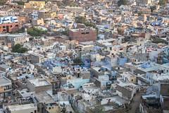 Rajasthan - Jodhpur - blue city- Mehrangharh Fort-2-2