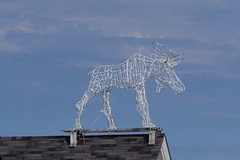 WHAT DO WE HAVE HERE? A ROOFTOP MOOSE! (fstopfinatic) Tags: pentaxkx pentax18135 nature outdoor landscape wicker moose maine