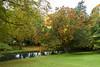 Flowing Watars (Jocey K) Tags: newzealand nikond750 southisland christchurch monavale autumn trees sky clouds river avon avonriver gardens