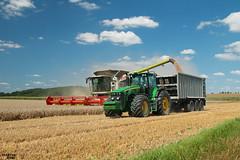 Wheat Harvest 2017 | CLAAS // JOHN DEERE // FLIEGL (martin_king.photo) Tags: claaslexion760apshybridterratrac combineharvester harvesttime wheatharvest2017 johndeere johndeere8530 fliegl flieglgigant asw graintrailer harvest2017 summer work tschechischerepublik powerfull martinkingphoto machines strong agricultural greatday great czechrepublic welovefarming agriculturalmachinery farm day working modernagriculture landwirtschaft moisson machine machinery unloading perardagri farmworld farmlife clouds cloudyday sky bluesky