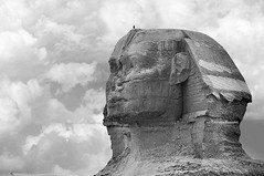 Sphinx and the bird (mhd.hamwi) Tags: sphinx bird bw egypt cairo clouds winter cold cloudy sky pyramids pyramidsofgiza mhdhamwi mohammadhamwi nikon nikond5000 monochrome outdoor القاهرة مصر الأهرامات أبوالهول الجيزة محمدالحموي vintage old ancient silhouette he