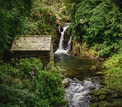 Rydal falls in summer (Anthony White) Tags: rydal england unitedkingdom gb firecrestpolariser wordsworth country mount hall anthonywhitesphotography a7r