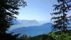 What A View (Daphne-8) Tags: rigi vierwaldstättersee lakelucerne luzern alps alpen alpes mountains bergen montagnes montanas view aussicht vista hazy nebel dünstig summer sommer estate verano schweiz switzerland zwitserland suisse svizzera svizra