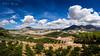 [ #280 :: 2017 ] (Salva Mira) Tags: algoda callosa callosadensarrià camp campo countryside country núvols nubes clouds marinabaixa lamarina paísvalencià salvamira salva salvadormira