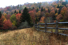 In The Mountains (EXPLORE!) (riqwammy) Tags: graysonhighlandstatepark mouthofwilson virginia fence outside outdoors recreation hike hiking trail path landscape trees fog grass color fall scenic nature natural wild woods forest at appalachiantrail nikon d750