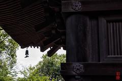 Deep And Profound (snakecats) Tags: 京都市 京都府 日本 jp 東寺 toji 神社仏閣 仏閣 寺 京都 kyoto buddhisttemple temple 五重塔 fivestoreypagoda