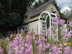 Seibert House (Patchwork Daily Desire) Tags: doon heritage village museum vintagequilt flower tree church patchworkdailydesire summer spring sky sweet sun