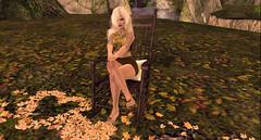 Happy Fall Y'all <3 (savrainsings) Tags: prtty catwa aphorism chicmoda breathe