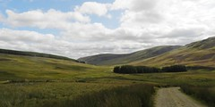 Looking back, Angus Glens, Sep 2017 (allanmaciver) Tags: dreish angus glens looking back survey scene moody track landrover estate moor land empty